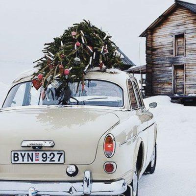 Merry Christmas + Happy Holidays